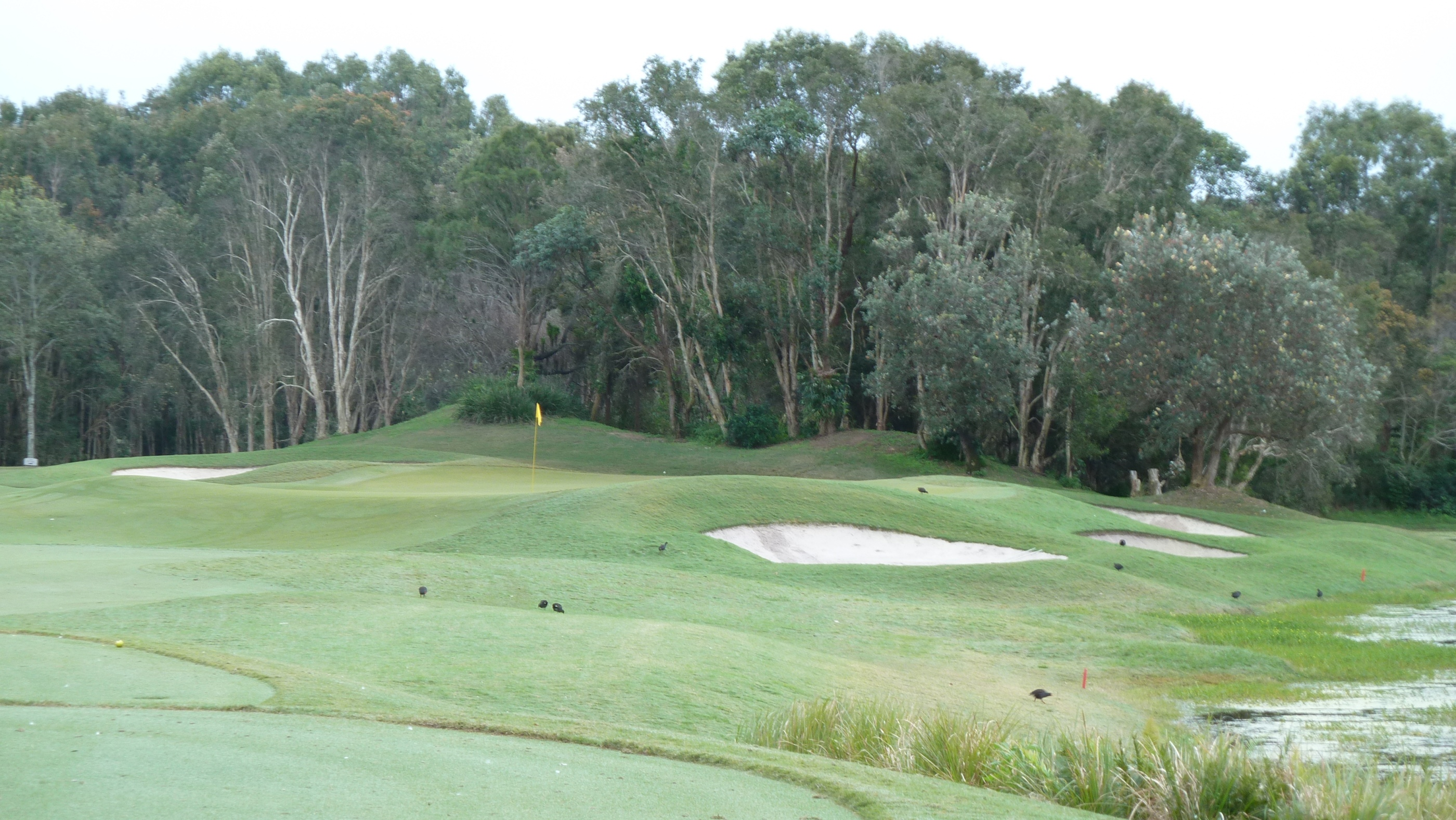 The 2nd green at Twin Waters Golf Club