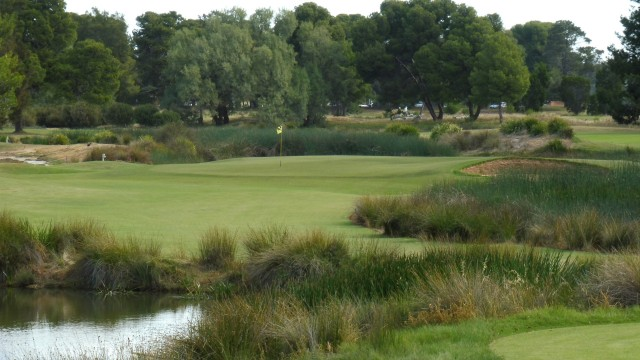 The 16th Tee at Glenelg Golf Club