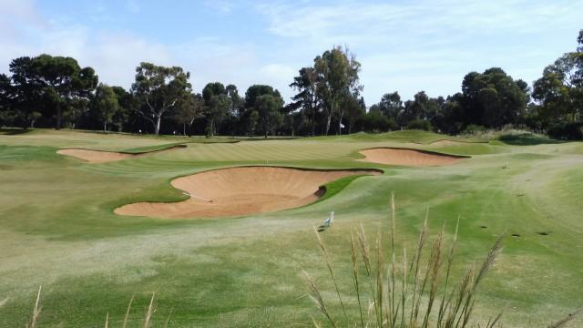 The 18th Green at Kooyonga Golf Club
