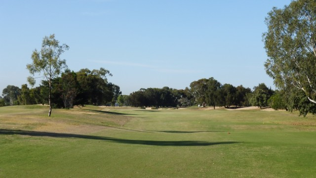 The 7th tee at The Grange Golf Club East