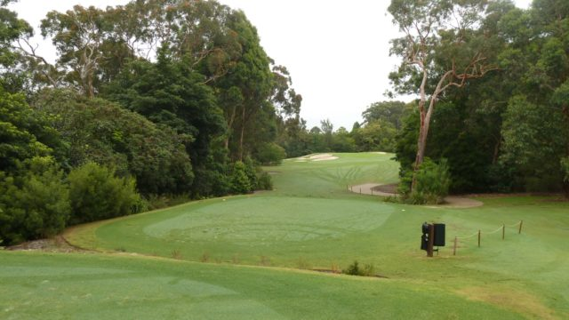 The 2nd tee at Avondale Golf Club