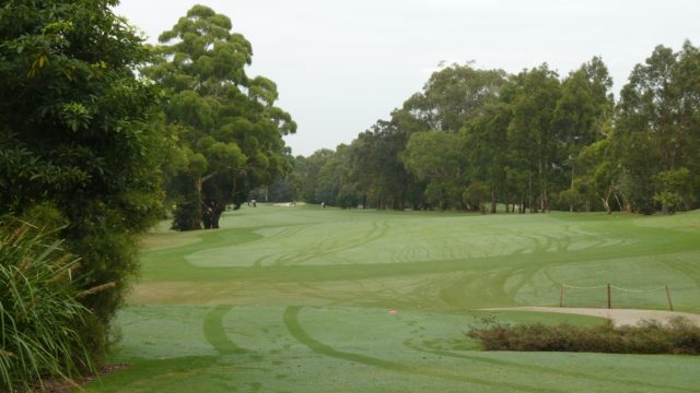 The 3rd tee at Avondale Golf Club