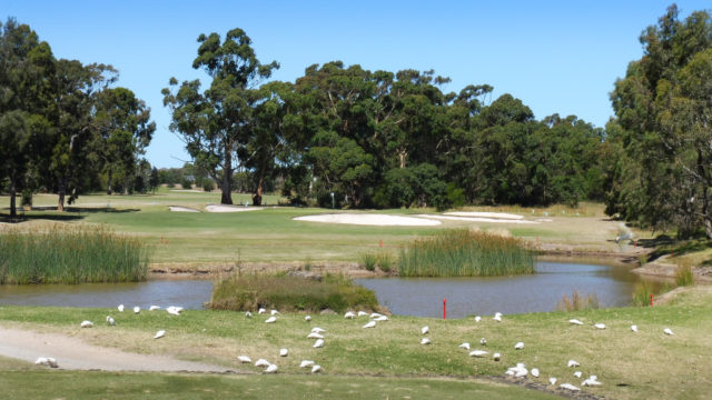 The 3rd tee at Cranbourne Golf Club