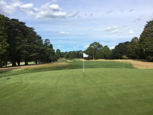 The 6th green at Riversdale Golf Club