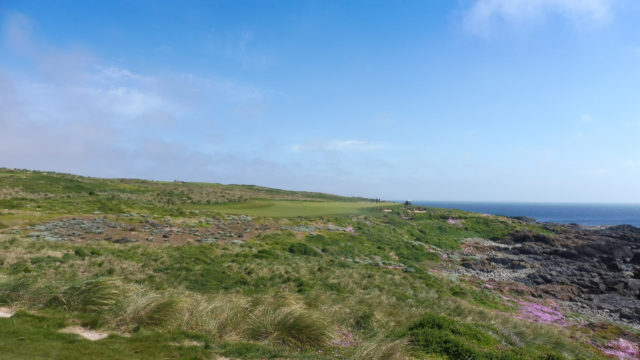 The 3rd tee at Cape Wickham Links