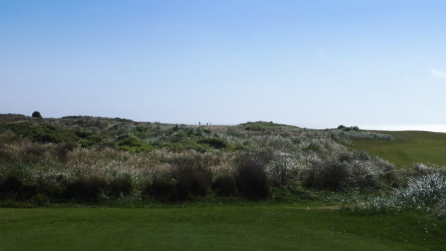 The 5th tee at Cape Wickham Links